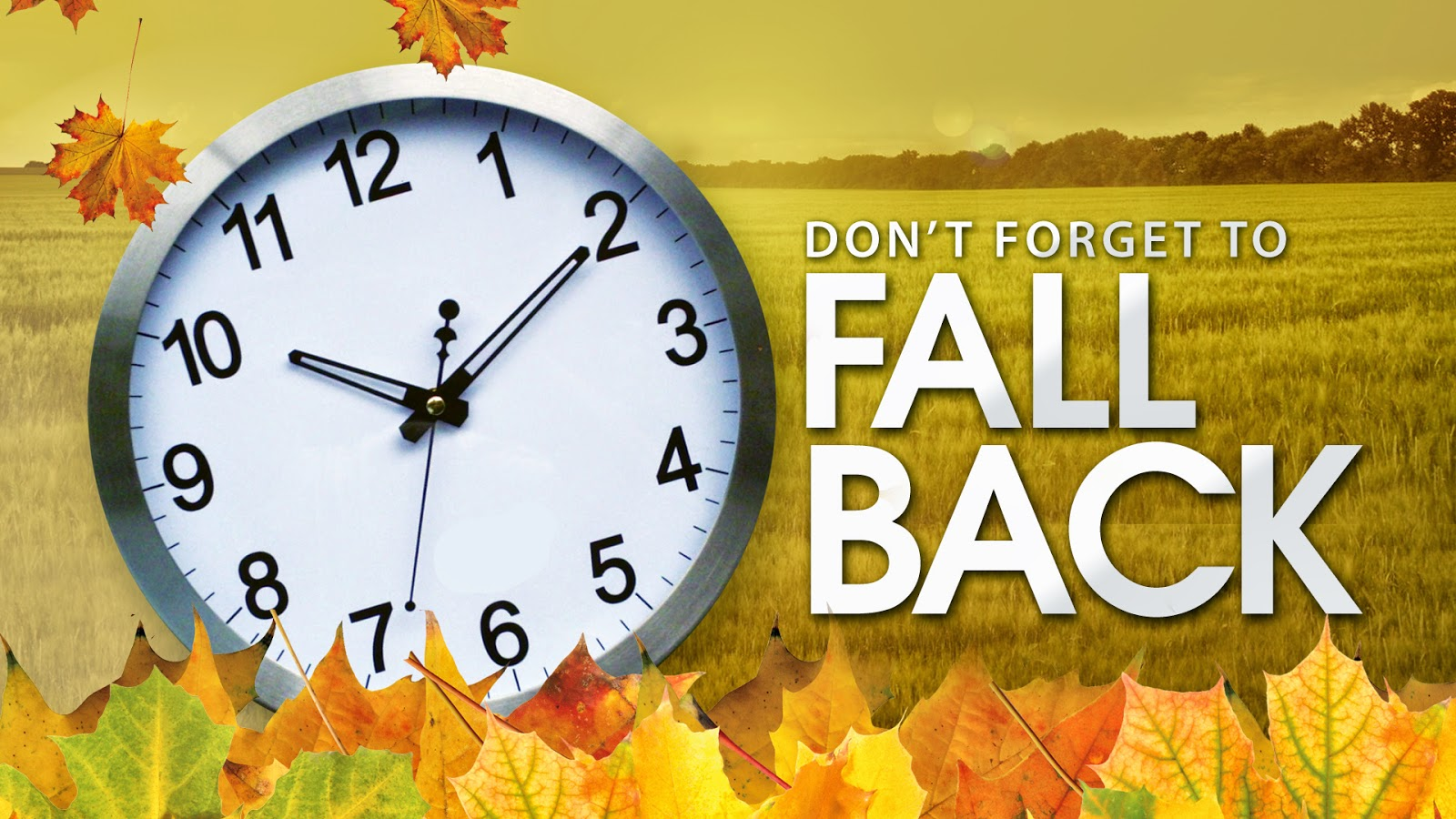Daylight Savings Time Fall