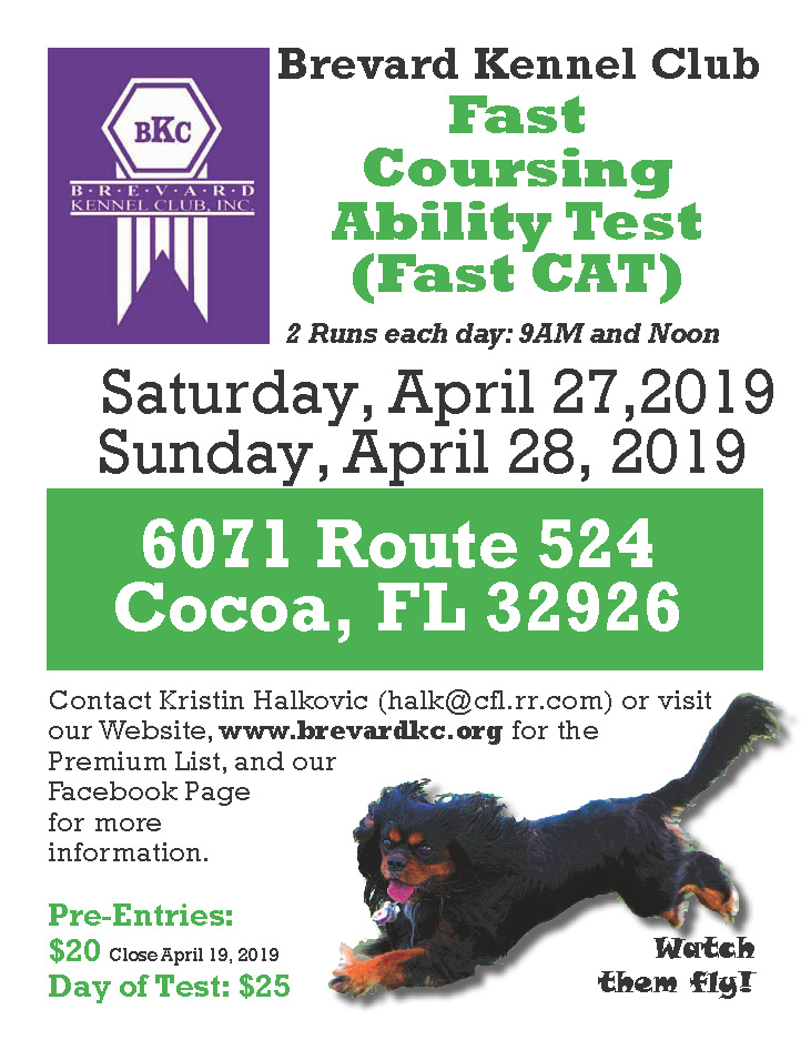 Fast CAT Flyer April 2019 Noon