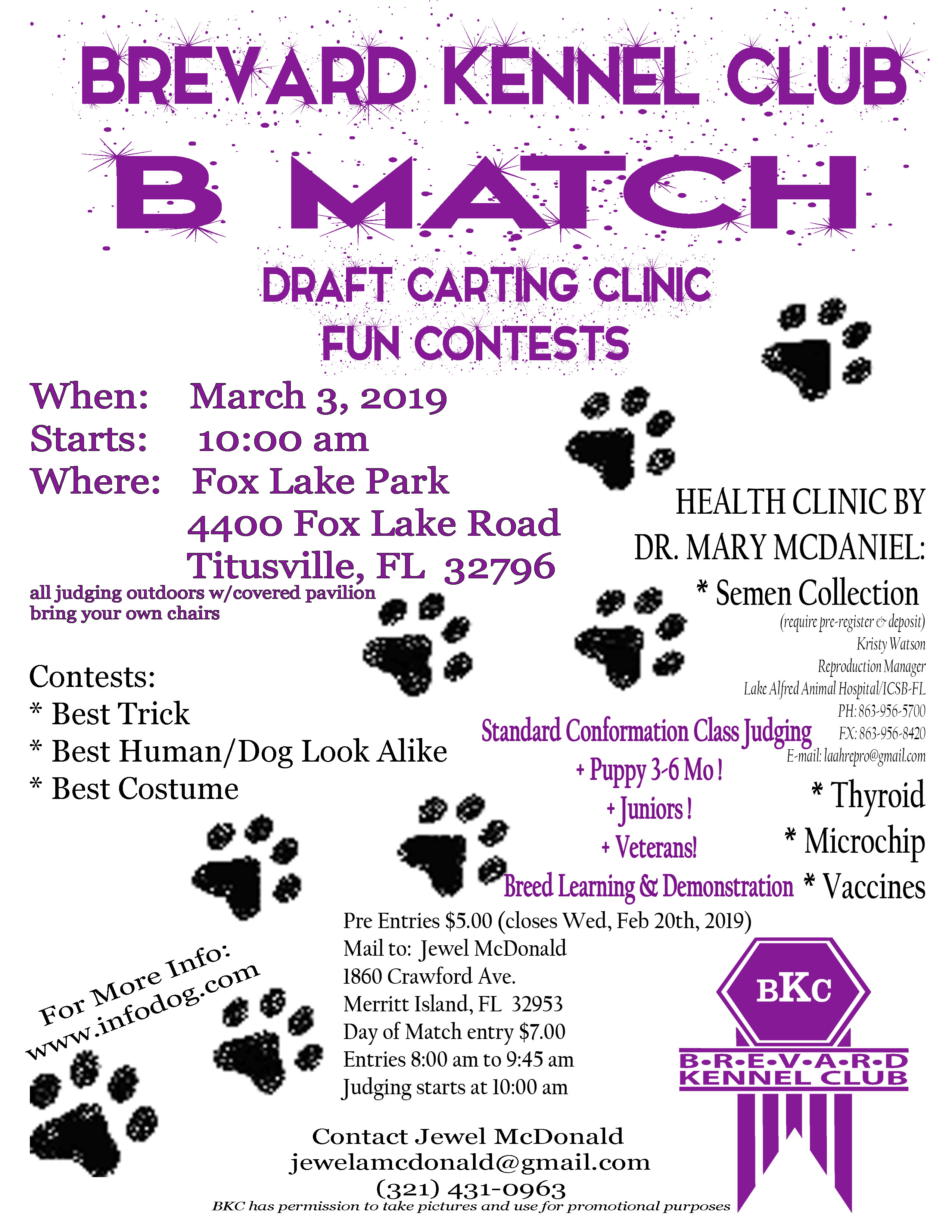 Flyer for B Match