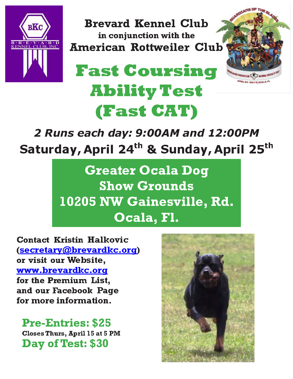 ARC Fast CAT 2021 Flyer